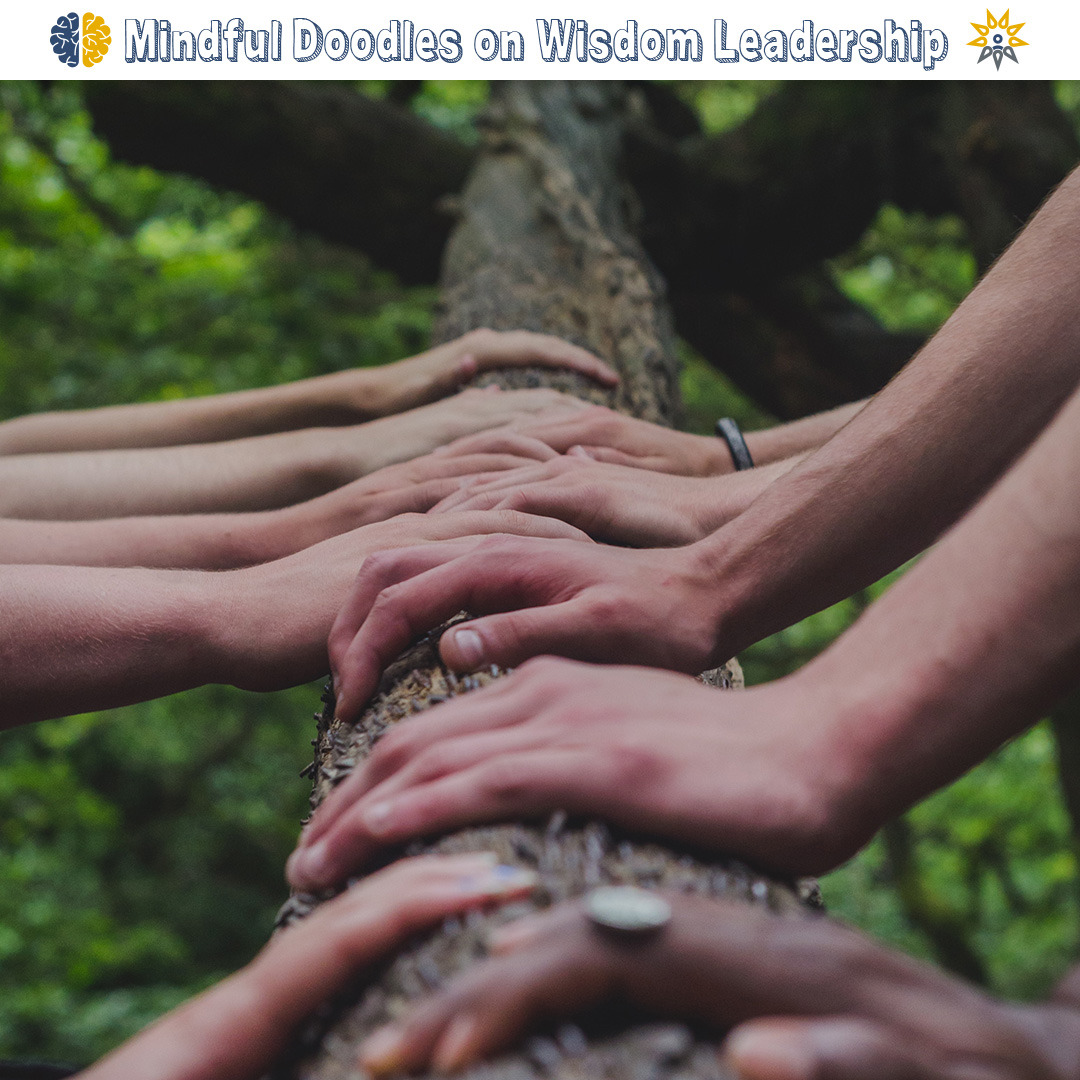 Wisdom leadership